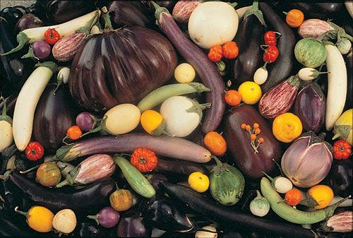 EggplantMix